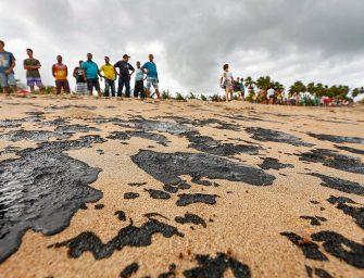 Pesca de camarão e lagosta será proibida a partir de 1º de novembro por 'provável contaminação química' por óleo no Nordeste